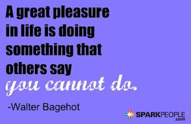 Motivational Quote - A great pleasure in life is doing something that other people say you cannot do.