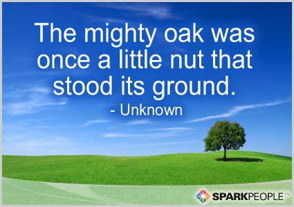 Motivational Quote - The mighty oak was once a little nut that stood its ground.